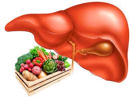 Питание при раке печени: полезные продукты